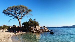 Plage-de-Palombaggia-e-Santa-Giulia-21-300x169 5 motivi per visitare la Corsica